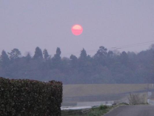 太陽330