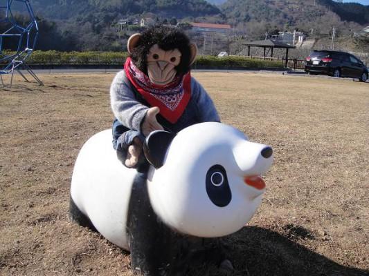 パン君とパンダ