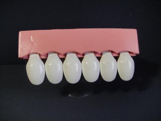 前歯の媒体1