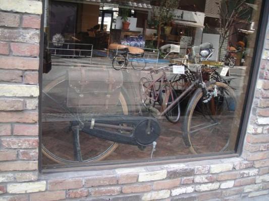 ウインドー自転車