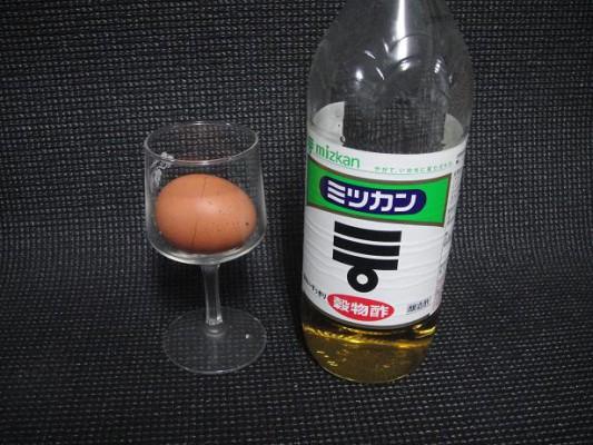 卵の実験2