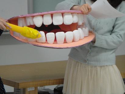 河原顎模型2